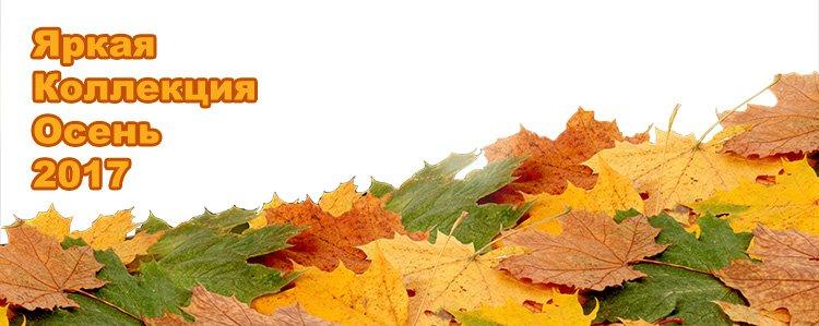 Перейти к новой версии сайта my.odejdaizkirgizii.ru